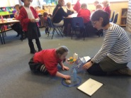 Science Curriculum Afternoon
